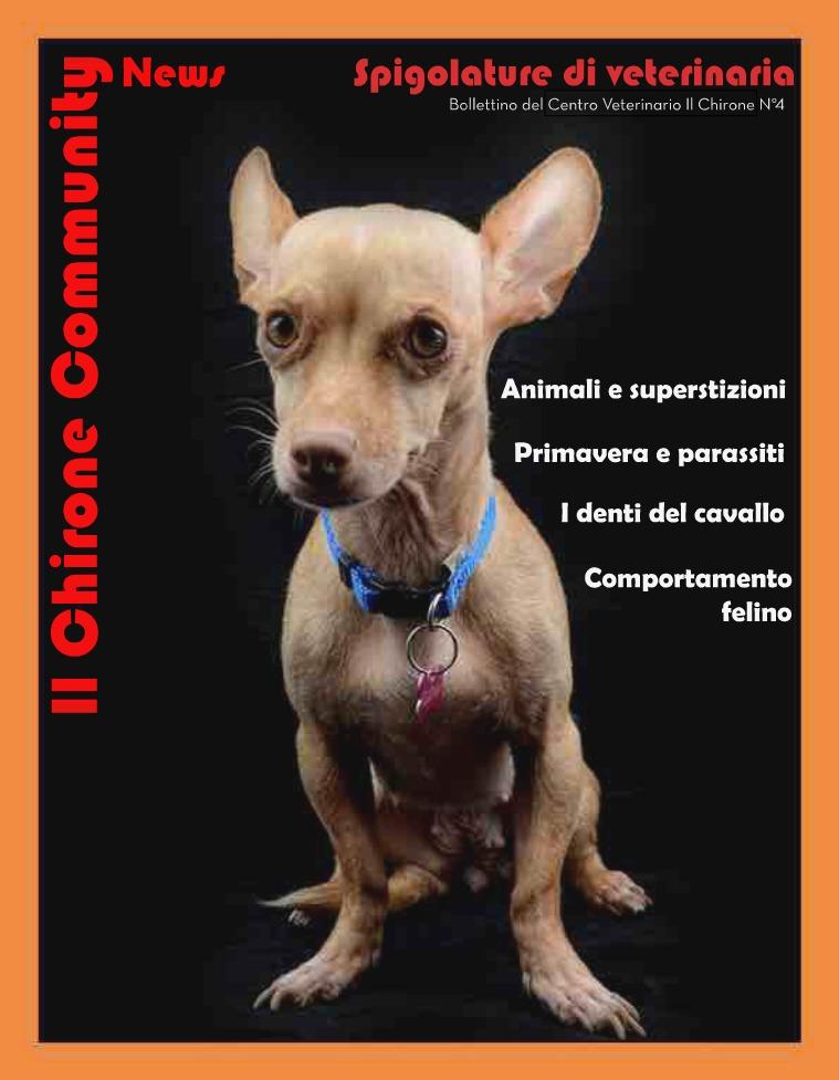 Il Chirone Community News Bollettino 4