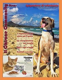 Il Chirone Community News