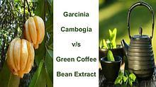 Garcinia  Cambogia  v/s  Green Coffee  Bean Extract