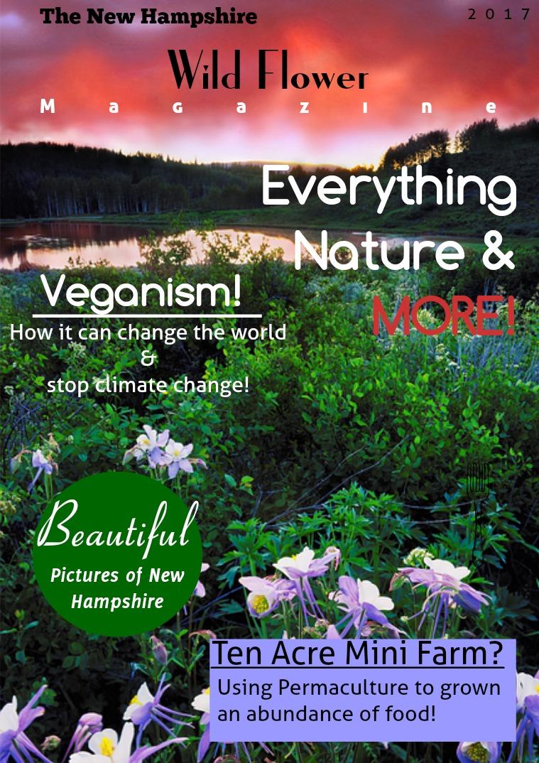 Nature New Hampshire Wildflower Magazine