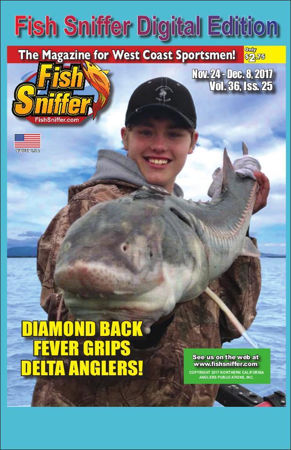 Issue 3625 Nov 24- Dec8 2017