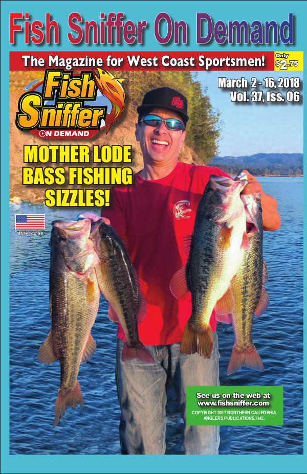 Issue 3706 March 2-16, 2018