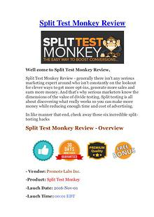 Split Test Monkey Review - It's Really Work Or Scam?
