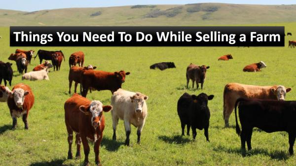 Things You Need To Do While Selling a Farm Things You Need To Do While Selling a Farm