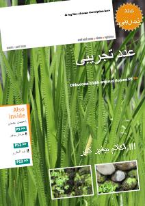 Creative Magazine 0