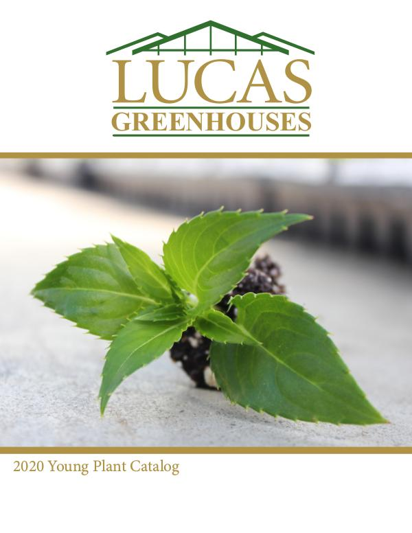 2020 Young Plant Catalog Lucas Greenhouses 2020 YP Catalog 8.23.19 pgs 1-19