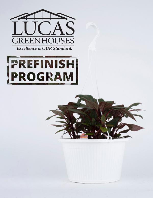 PreFinished Program