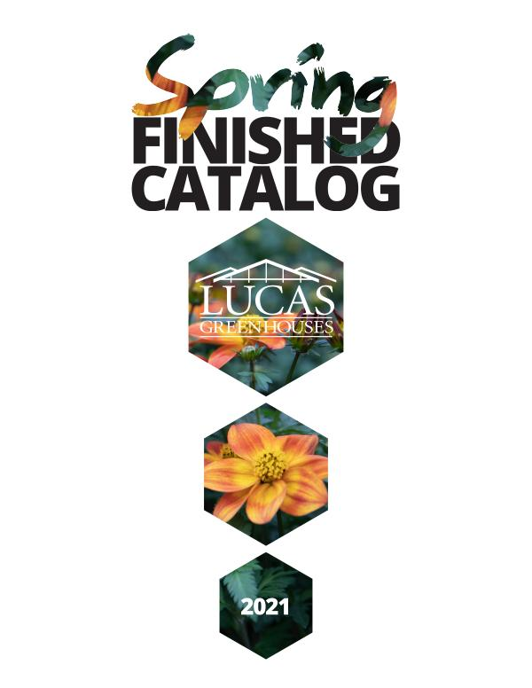 2021 Finished Catalog Online