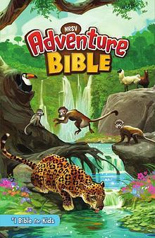 NRSV Adventure Bible | Sampler