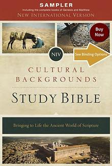 NIV, Cultural Backgrounds Study Bible