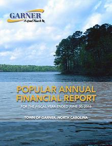Popular Annual Financial Report - 2016