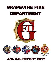 GFD Annual Report 2017