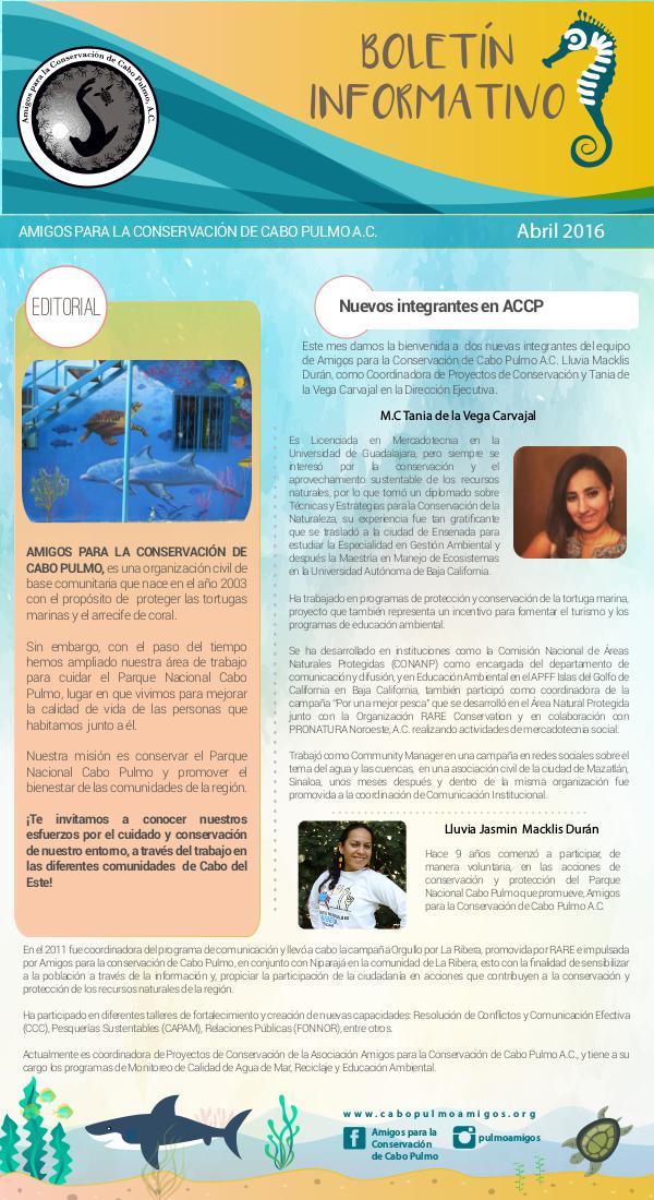 Boletín Informativo ACCP 1