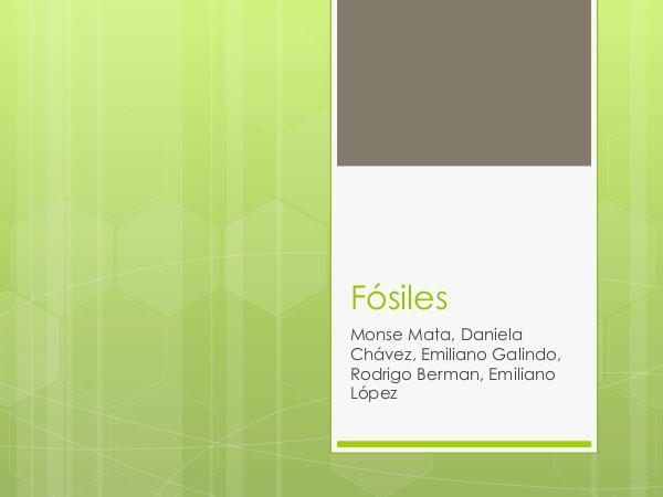 Fósiles Fósiles