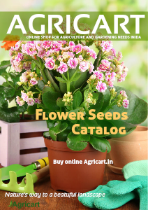 Agricart seed catalog oct 2012