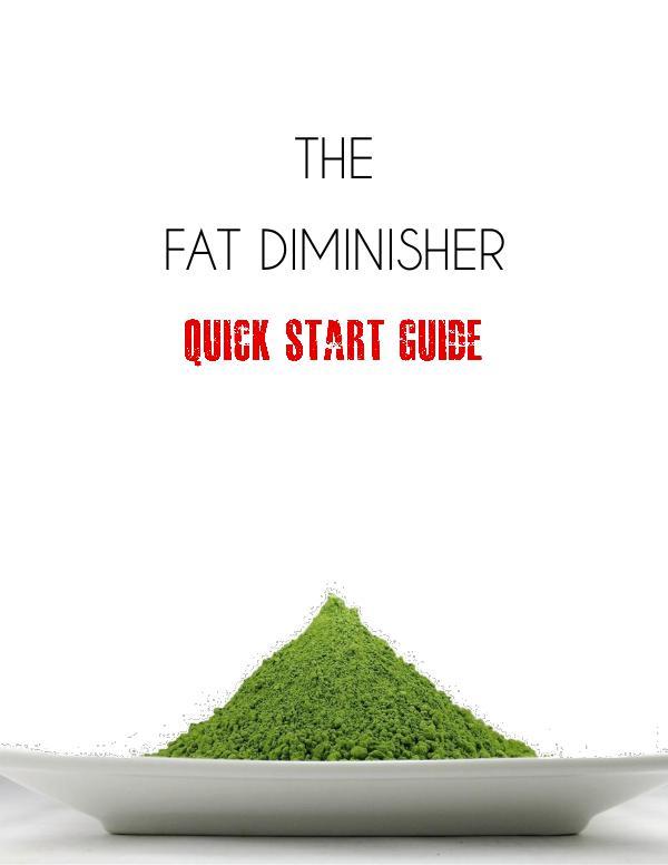 Fat Diminisher PDF / System Is Wesley Virgin's Diet Food List Work?