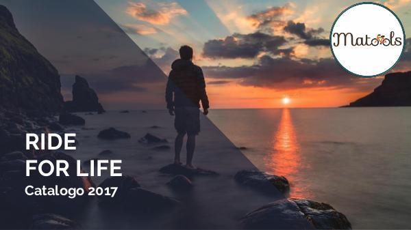 Matools Catalogo 2017 Matools