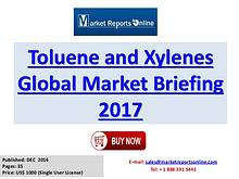 Global Styrene Industry Report 2017 Services