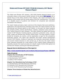 5ST Industry 2017 Market Size, Share and Growth Analysis Research Rep
