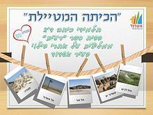 כיתה ד'2 מטיילת- המלצה לאתרי בילוי בעיר אשדוד