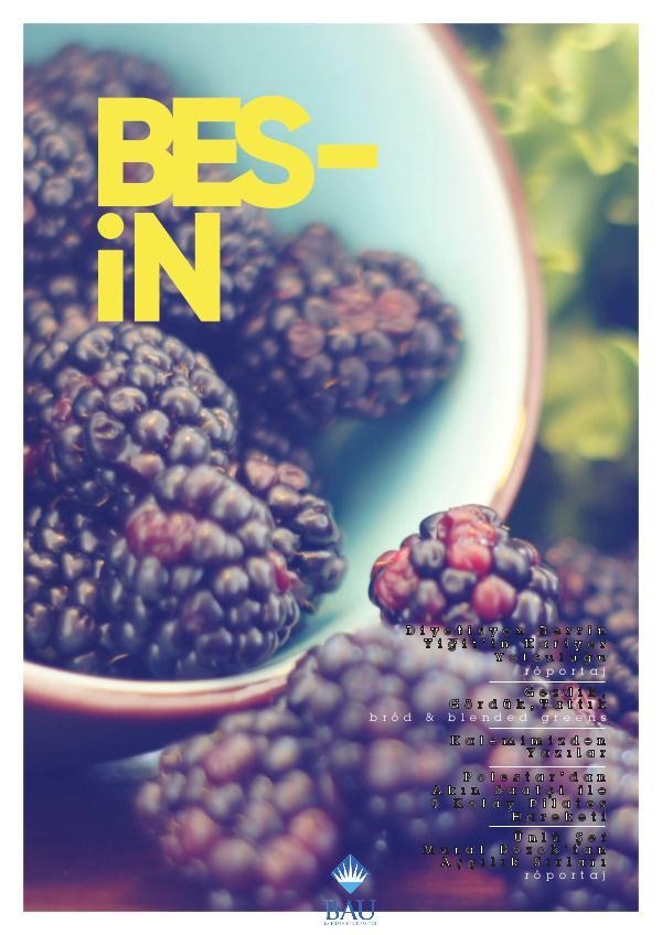 BES-İN Dergisi Nisan 2017