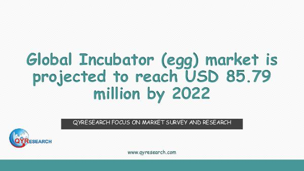 QYR Market Research Global Incubator (egg) market research