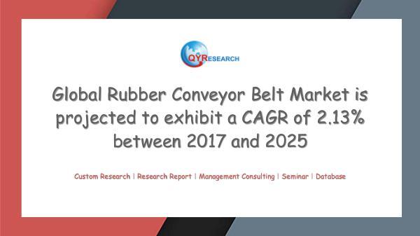 QYR Market Research Global Rubber Conveyor Belt Market Research
