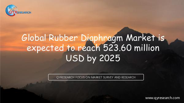 Global Rubber Diaphragm Market Research