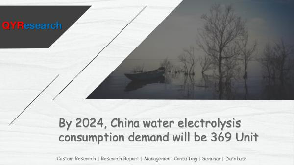 China water electrolysis market research