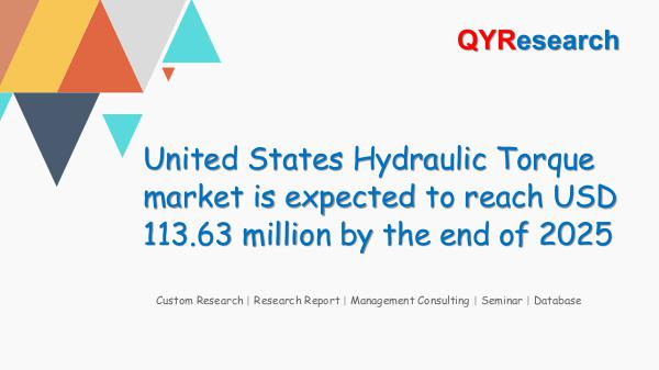 United States Hydraulic Torque market research