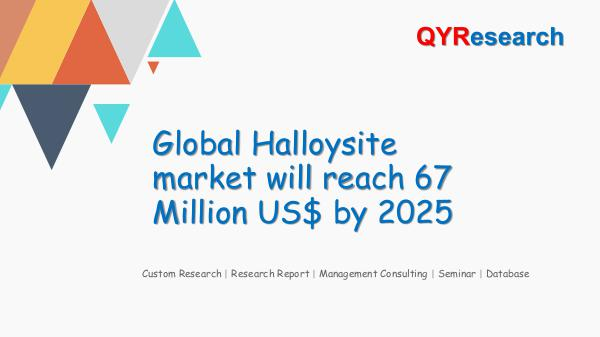 QYR Market Research Global Halloysite market research