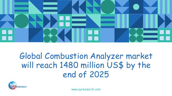 Global Combustion Analyzer market research