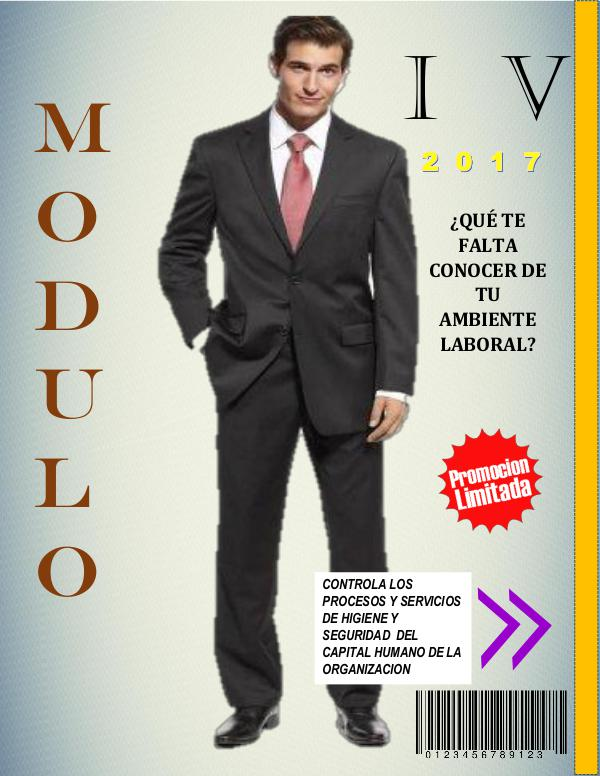 MODULO IV MODULO IV
