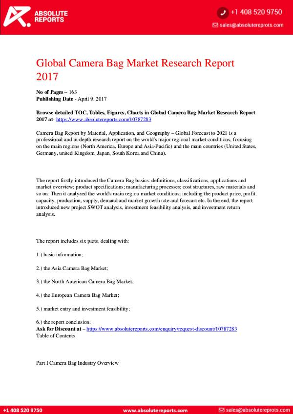 28-07-2017 Camera-Bag-Market-Research-Report-2017