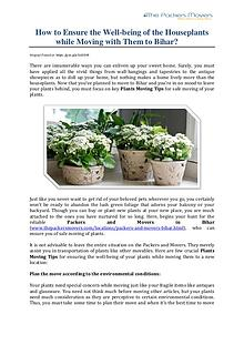How to Ensure the Well-being of the Houseplants while Moving