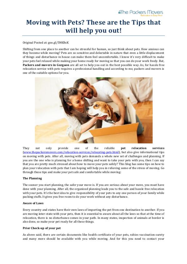 Moving with Pets These are the Tips that will help