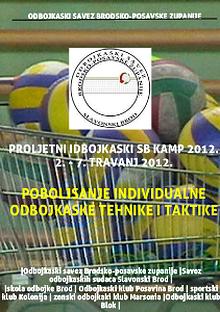 Volleyball and school program
