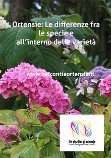 Ortensie: Le differenze fra le specie e all'interno delle varietà