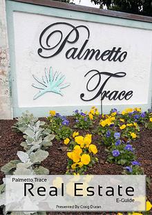 Palmetto Trace Real Estate e-Guide