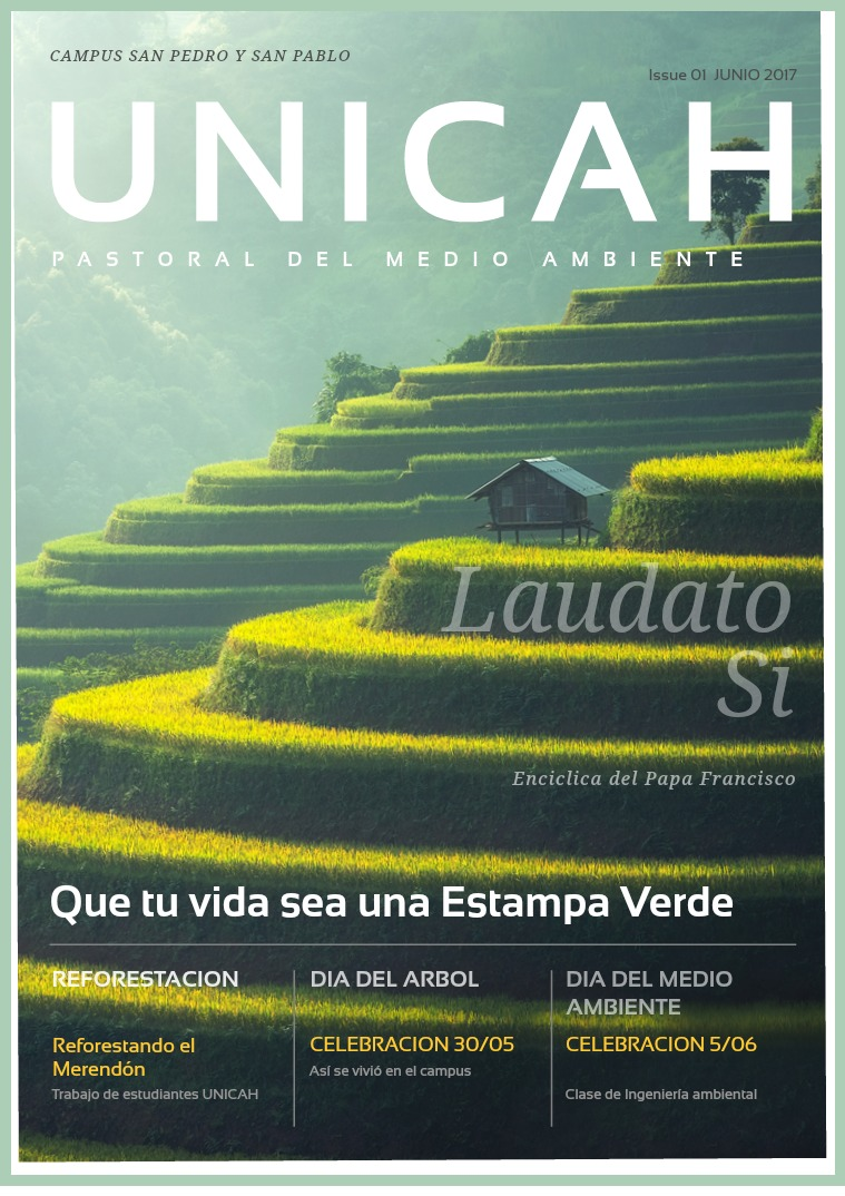Pastoral Medio Ambiente Issue 01 Pastoral del Medio Ambiente Vol. 01