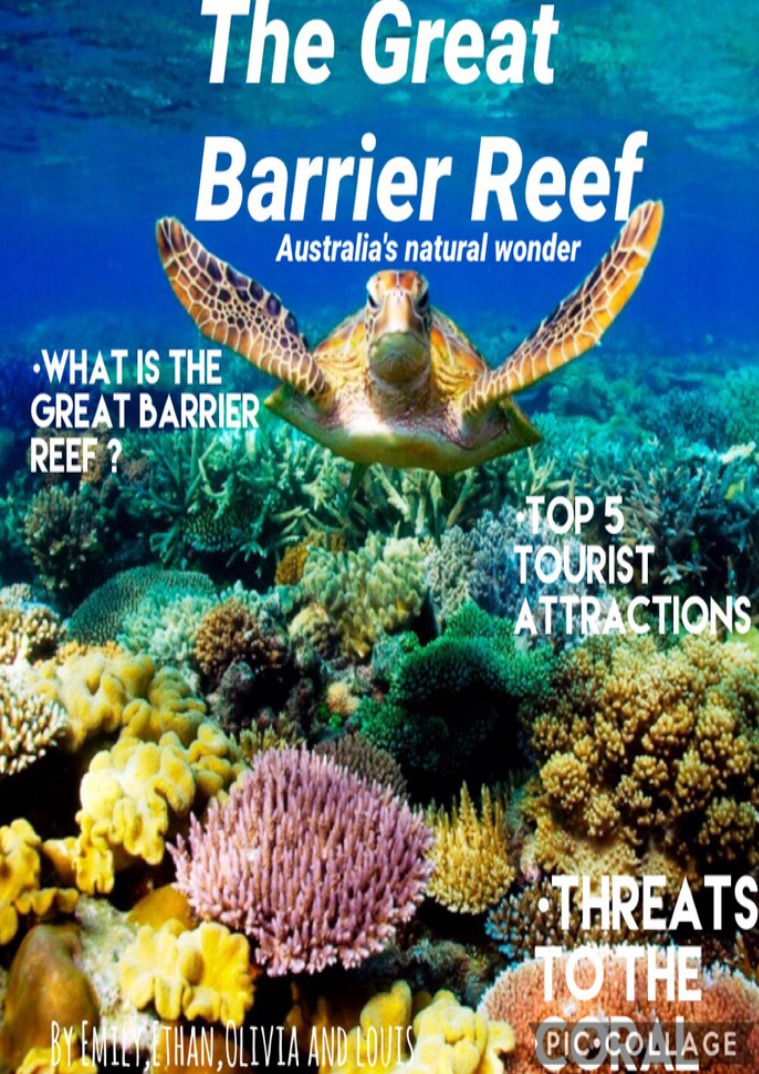 THE GREAT BARRIER REEF   Australia's Natural wonder The great barrier reef