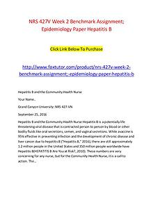 NRS 427V Week 2 Benchmark Assignment; Epidemiology Paper Hepatitis B