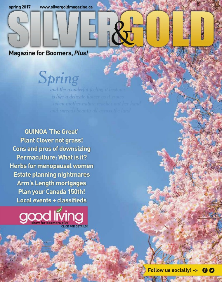 Silver and Gold Magazine Spring 2017