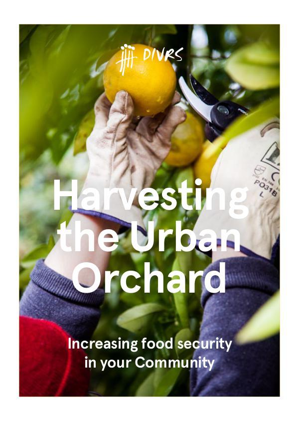 Harvesting the Urban Orchard DIVRS Harvesting the Urban Orchard