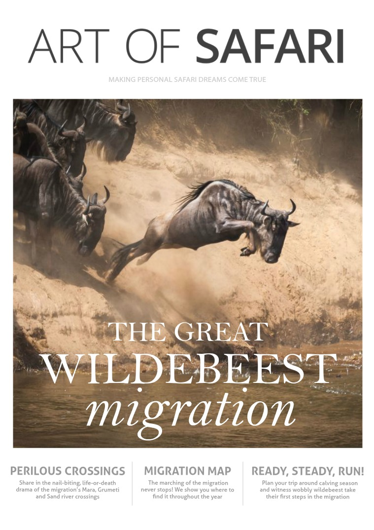 ART OF SAFARI MAGAZINE Great Wildebeest Migration