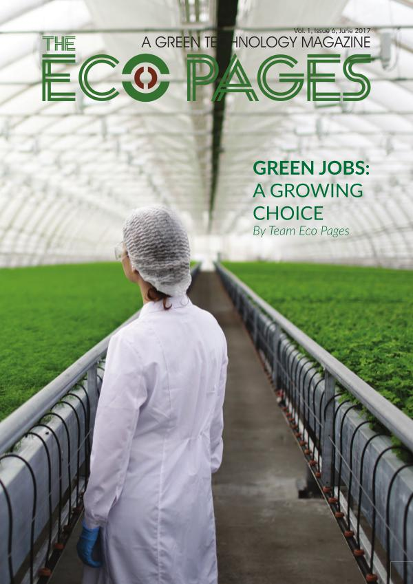 The Eco pages - June  17 issue