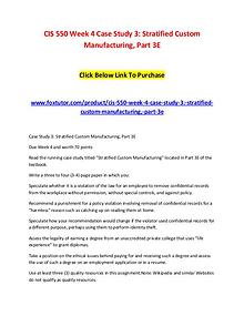 CIS 550 Week 4 Case Study 3 Stratified Custom Manufacturing, Part 3E