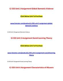 CJ 333 All Assignments