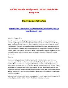 CJA 347 Module 5 Assignment 1 LASA 2 Juvenile Re-entry Plan