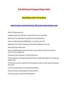 CJA 453 Grant Proposal Paper Only